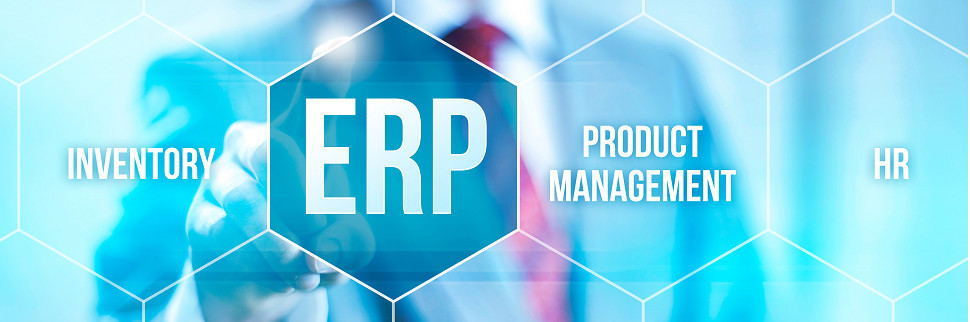 ERP software with Excel